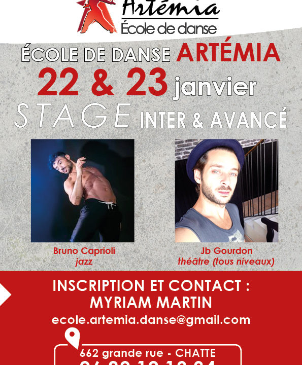 https://artemia-danse.com/wp-content/uploads/2021/08/0-14-595x720.jpg